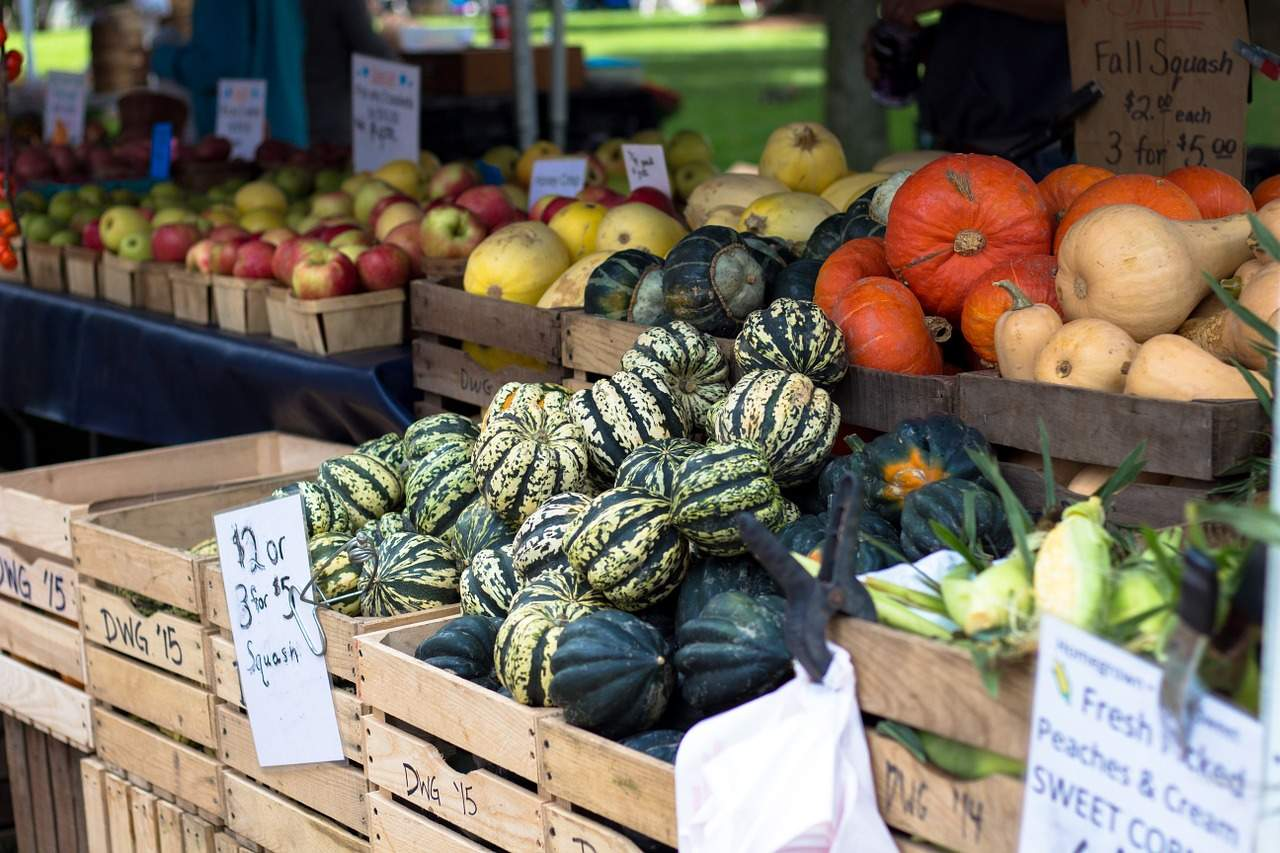 What is a CSA? And Tips for Shopping Local